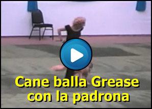 Cane che balla Grease con la sua padrona