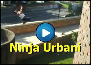Ninja urbani