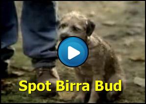 Spot Birra Bud Light con cagnolino