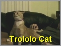 Trololo Cat