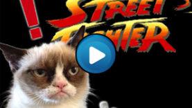 Gatti Street Fighter
