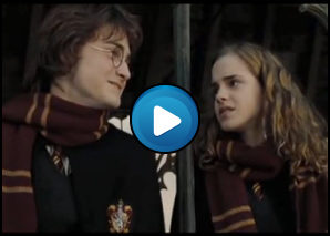 harry potter e hermione by carletto fx
